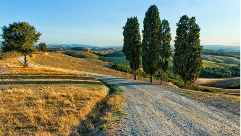 Il tour fra le sagre d'Italia porta a Greccio, Canino e Carrù