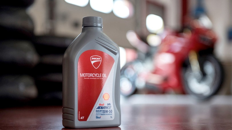 Olio Shell Advance Ducati