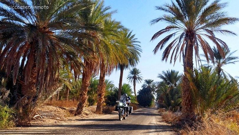 Tunisia d'inverno: in Africa con l'Africa #2