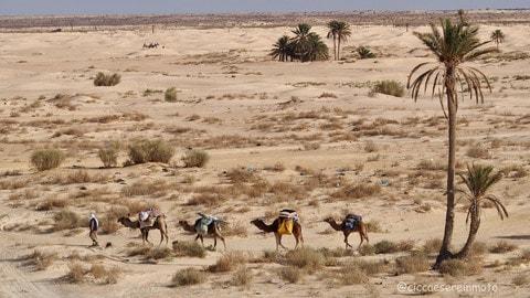 Tunisia d'inverno #2 - LE FOTO