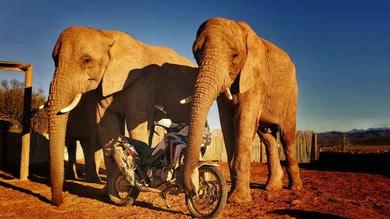 Honda Adventure Roads 2019: vi portiamo alla scoperta dell'Africa